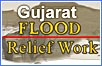 Gujarat Flood Relief Work